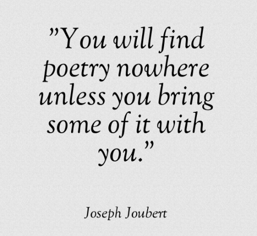 You-will-find-poetry-nowhere